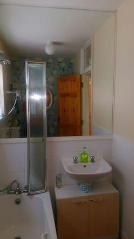 Shared  bathroom  downstairs near bedroom