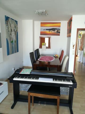 Helles,sauberes  privat Zimmer im Haus Ludwighafen