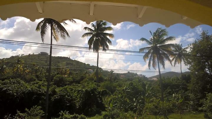 Palm View by Rodney Bay Marina 2