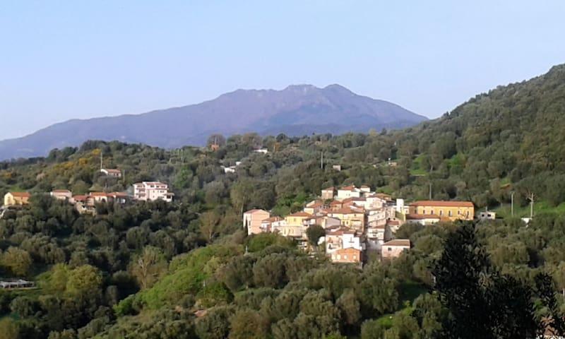 Casetta Natura. Tra collina e Mare.