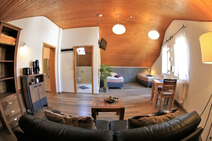 Nr.2  mod. Dachwohnung für 1 - 2 Pers. n. Weinheim
