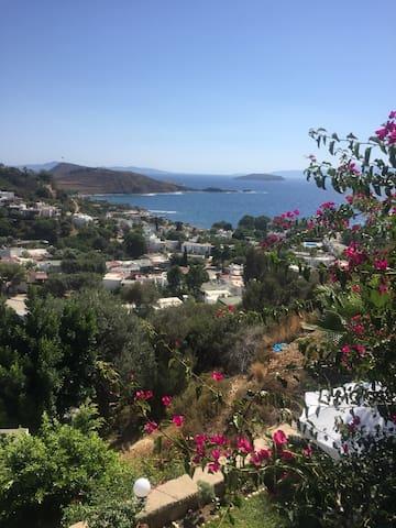 Muhteşem Yunan adaları ve Gümüşlük Manzarası
