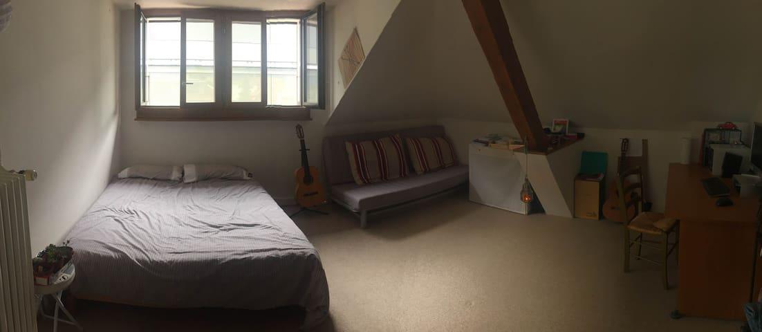 Room in confortable flat in Vevey/La tour de Peilz - La Tour-de-Peilz - Wohnung