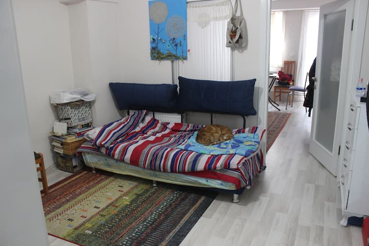 Studio Flat / In the Center of The City - Çanakkale Merkez - Lägenhet