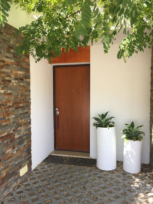 The main door of the House in a Lowland