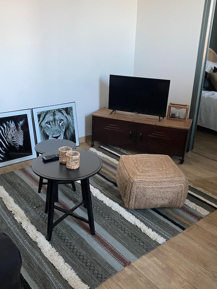Cosy  Appartement 2  pièces , proche centre Dijon