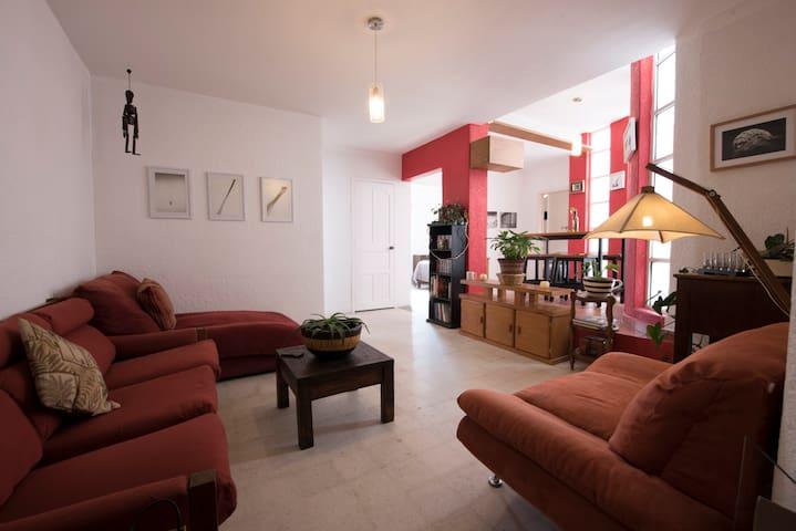 Cozy apartment in La Roma