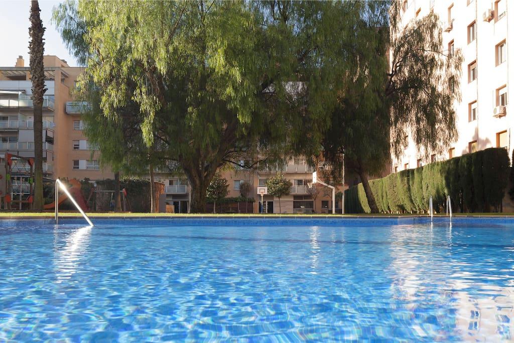 Fantastic communal pool