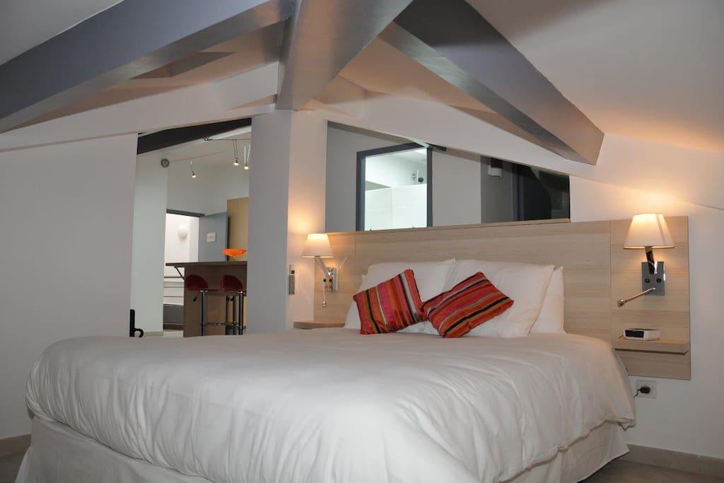 centre ville loft spacieux chambres d 39 h tes louer montpellier languedoc roussillon france. Black Bedroom Furniture Sets. Home Design Ideas