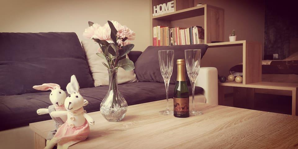 Apartament Gęsia Szyja zaprasza