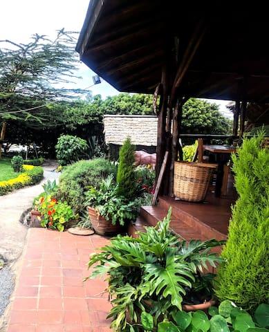 Serene, beautiful and cozy cabin