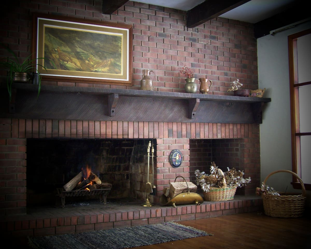 Fireplace in living room