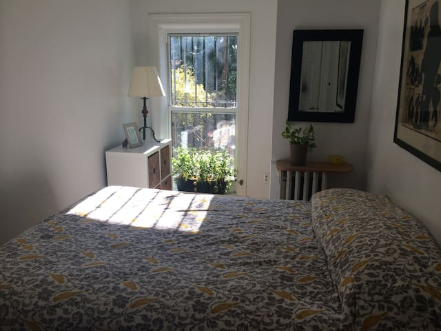 Charming private room in Brooklyn - Brooklyn - Apartment