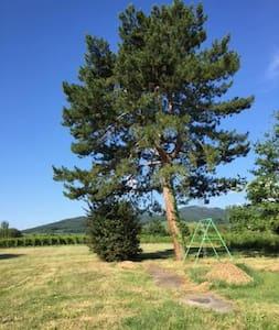 chambre privée calme proche Obernai - Eichhoffen