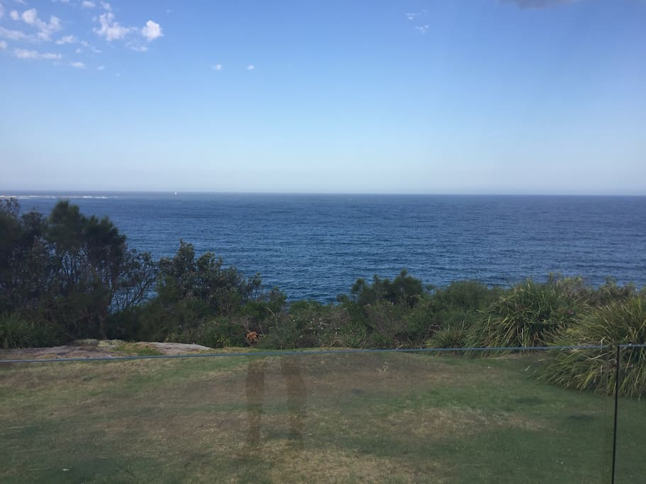 The House backs onto the Walking track from Dee Why to Curl Curl.