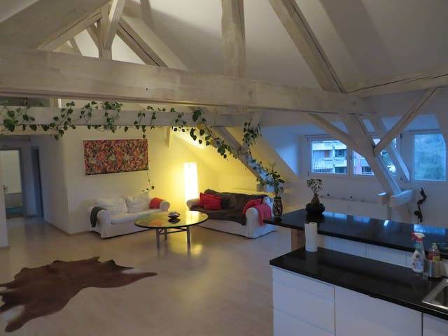 Dachwohnung am Rhein (BS) - Basel