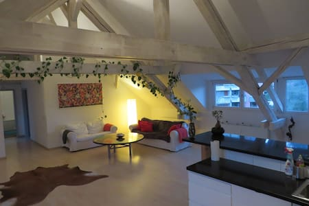 Dachwohnung am Rhein (BS) - Basileia - Apartamento