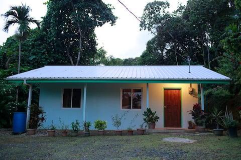 Ngermid Village House