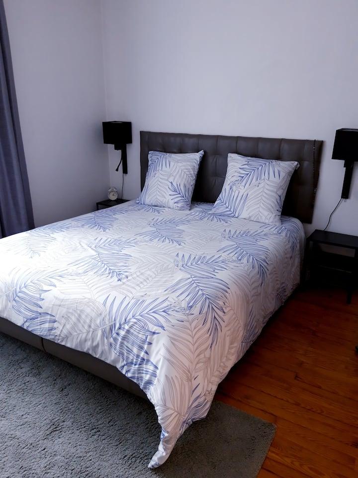 Une Magnifique chambre boulevard Côte Blatin