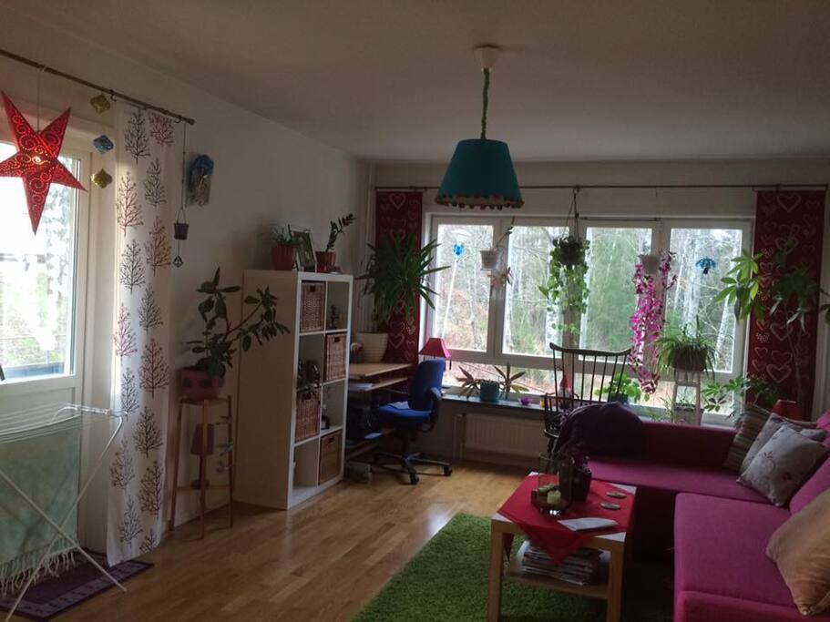 my livingroom is a pearl!