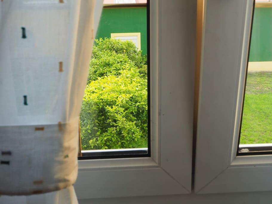 La casa tiene una amplia zona verde con limoneros, una pequeña huerta, terraza, para que disfrutes tu estancia a lo ancho