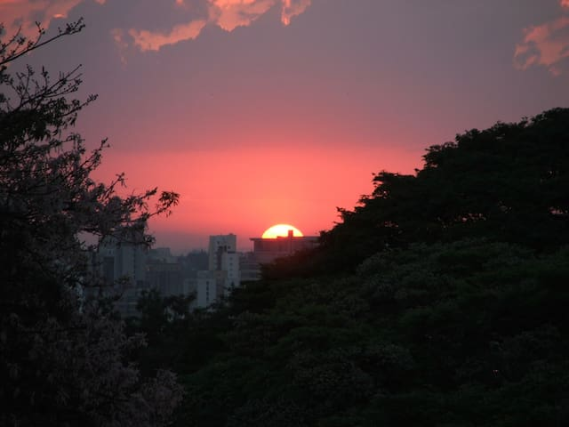 Cosy and beautiful Apartment Near Ibirapuera Park - São Paulo - Apartamento