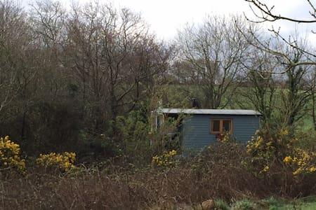 Cosy Shepherd's Hut near Snowdonia - Bethel