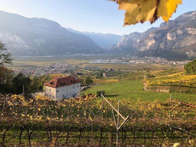 Villa Miravalle, the luxury vineyard experience
