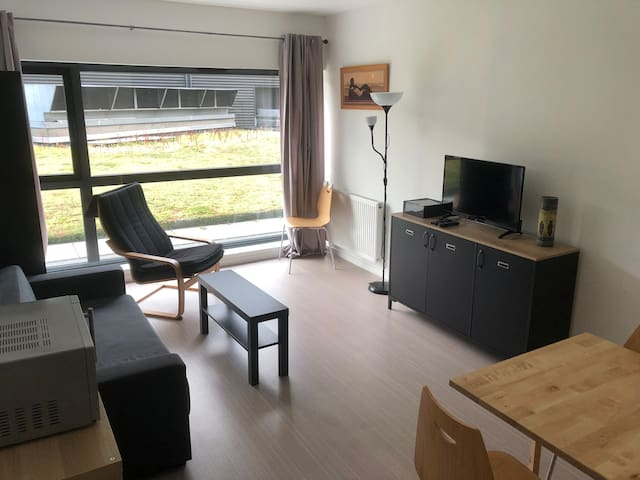 Appart 1 chambre  Lille-Euralille 2gares, autonome