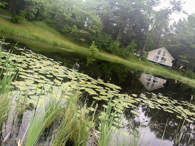Charming 2 beds, 1 bath, and a loft with a lake front view and shoreline