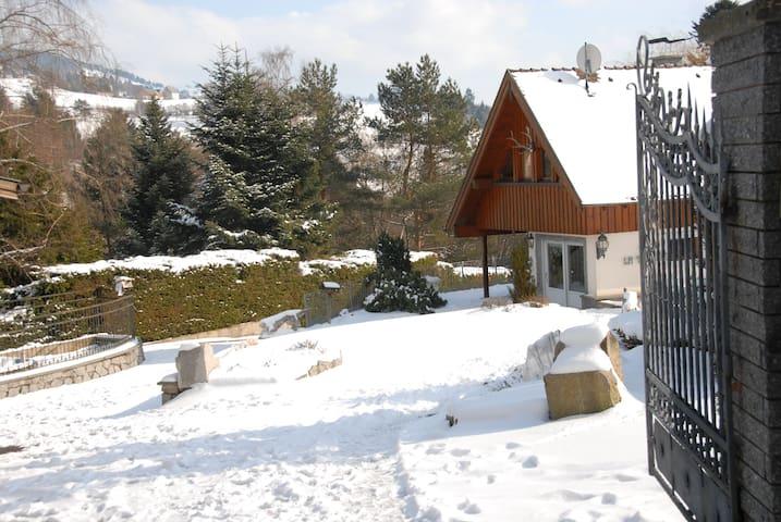 Gîte en Alsace, au cœur des Vosges, vue piscine - Soultzeren - 公寓