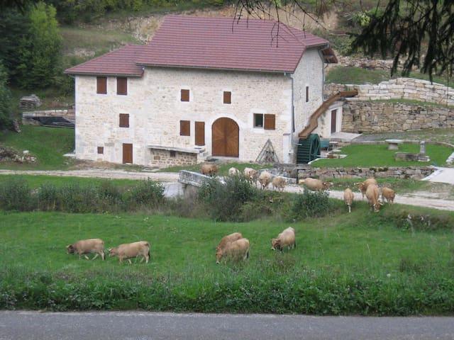 maison de caractère - Le Poizat-Lalleyriat - House