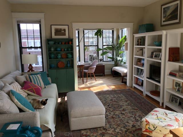 Large 1 Bedroom near Wash U (Demun) - St. Louis - Apartament