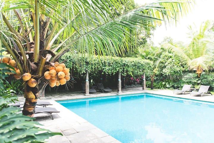 Indian Summer House Luxury Villa