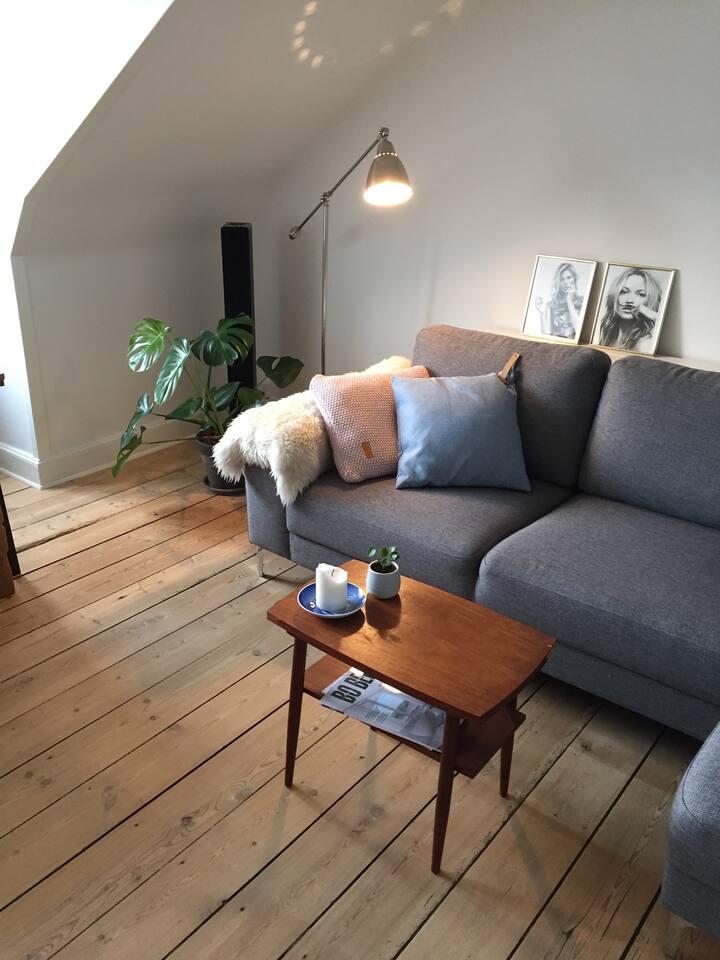 Hyggelig lejlighed i Odense centrum