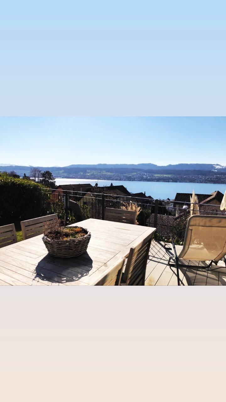 Lake view Vila in Zurich