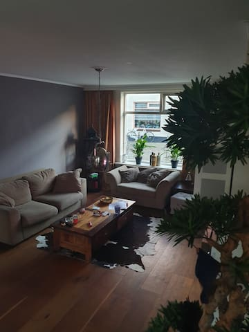 Nice rooms close to Amsterdam, Rotterdam