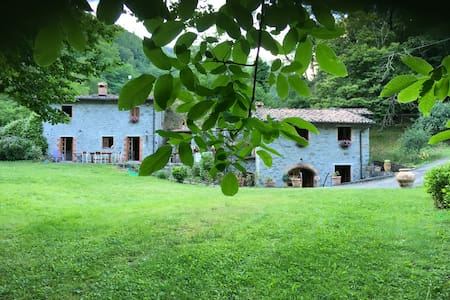 Total Relaxation in the Wood | Lucca | Toscana