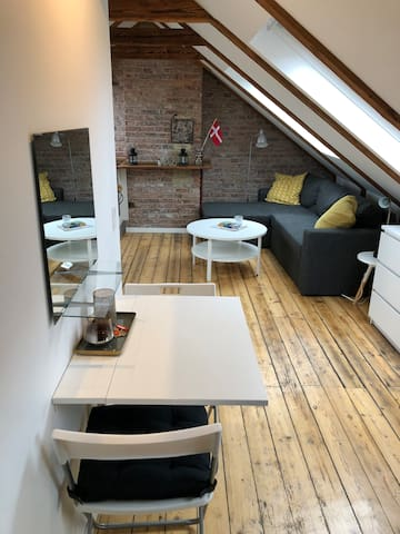 Amazing loft, modern & cozy in Østerbro