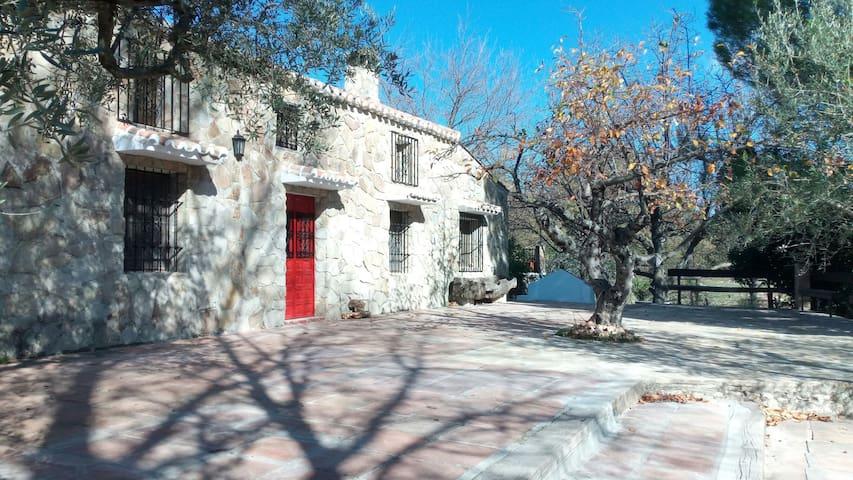 Casa Rural en plena Naturaleza - Alfarnate - House