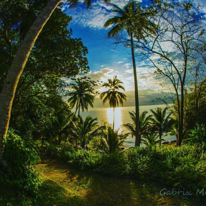 Exotic Destination - Camping - Ilha das Couves