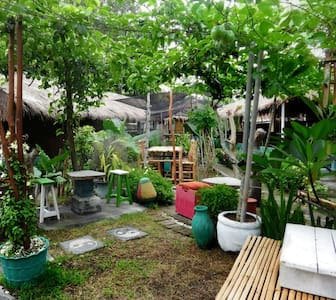 A Cozy Garden Traditional House