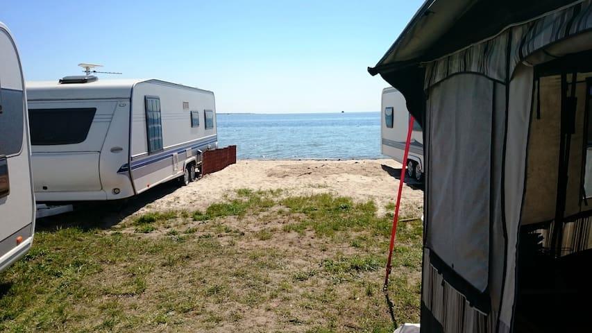 Kemping przy samej plaży nad Zatoką - Jastarnia - Wóz Kempingowy/RV