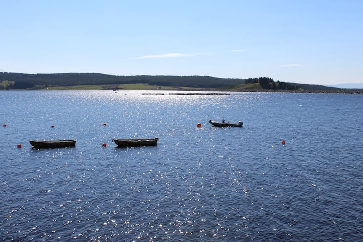 Llyn Brenig / lake 20 minutes away, great walking, cycling & sailing.