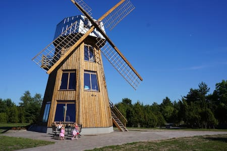 Windmill 3. Floor Suit