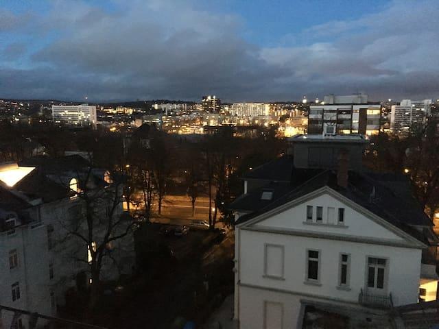 Gemütliche kleine Dachwohnung in Bahnhofsnähe - Висбаден - Квартира