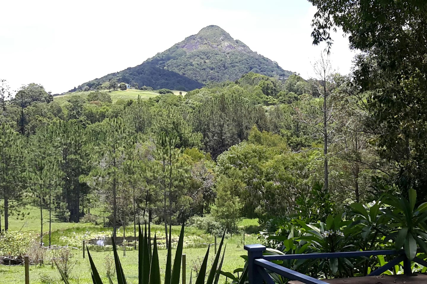 You will find it hard to look away from this beautiful view from your private verandah