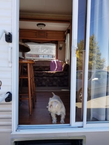 Front door ( Dog not Included).