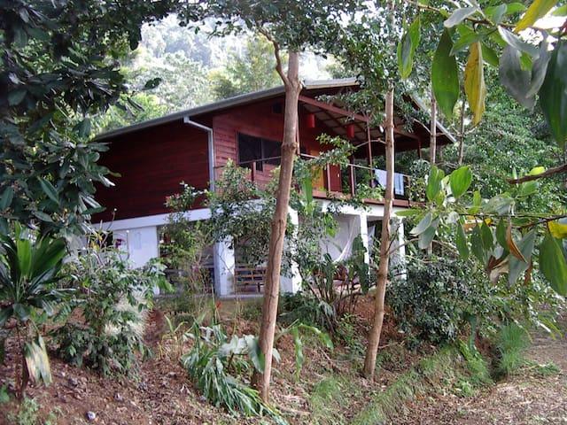 Cabina Cascada