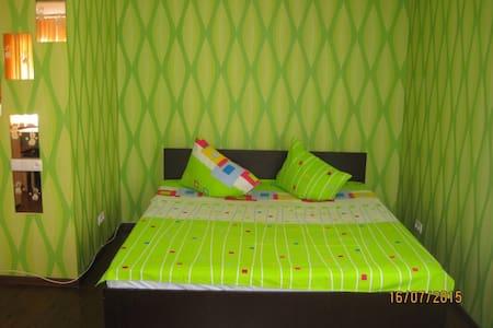 1-комнатная квартира в Запорожье - Zaporizhzhia